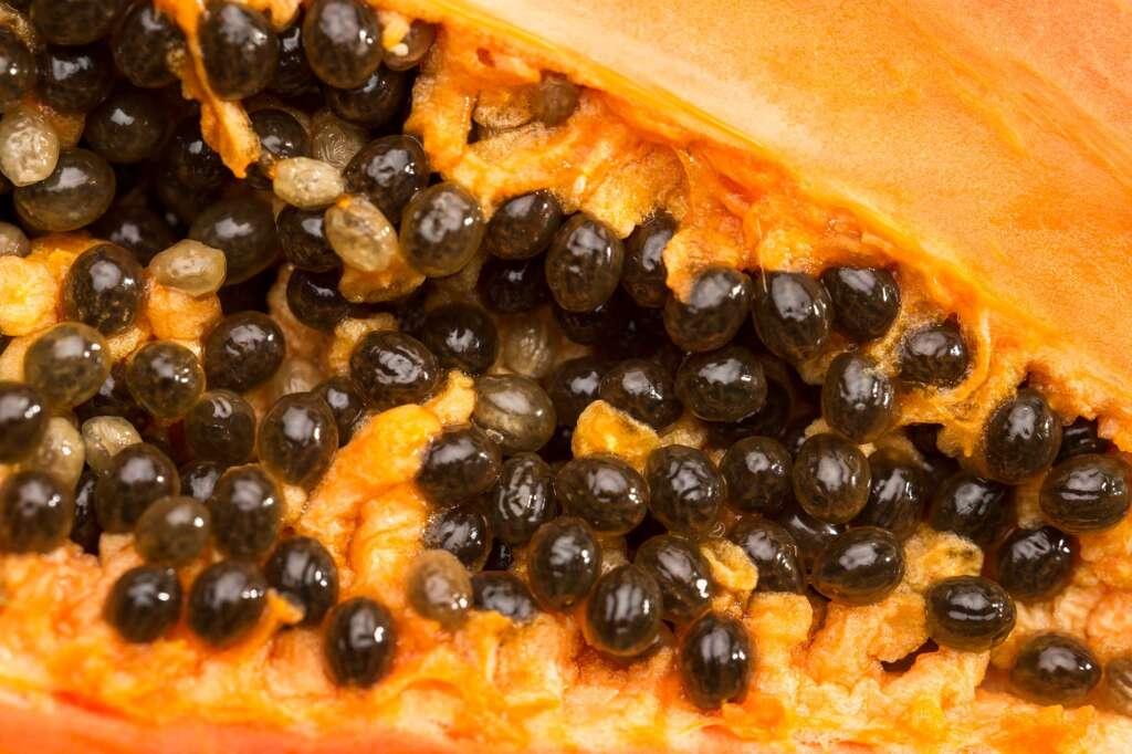 ¿Qué son las Semillas Híbridas?